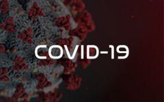 COVID19 et apiculture